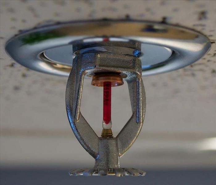 Commercial Myths and Facts About Sprinkler Systems (Part 1)