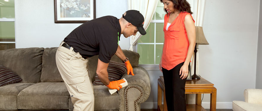 East Stroudsburg, PA carpet upholstery cleaning