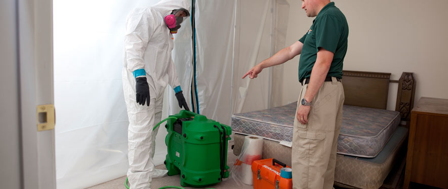 East Stroudsburg, PA mold removal process